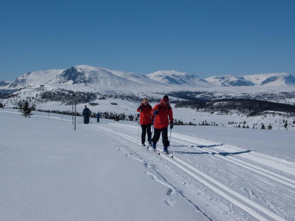 Langrenn, skiturer, Hallingdal, Hemsedal, Geilo, Hol, Ål, Bergsjø, Torpo, Gol, Golsfjellet, Nesbyen, Flå