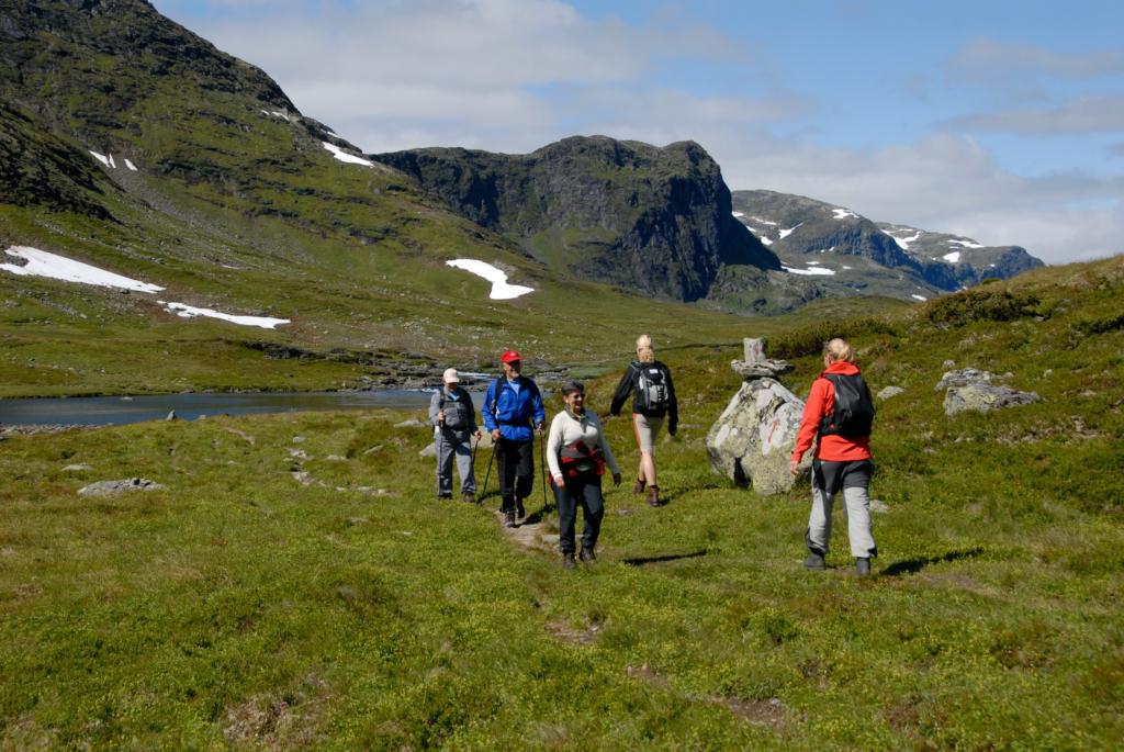 Vandring, fotturer, fjellturer, Hallingdal, Hemsedal, Hardangervidda, Geilo, Hol, Ål, Bergsjø, Gol, Golsfjellet, Nesbyen, Flå