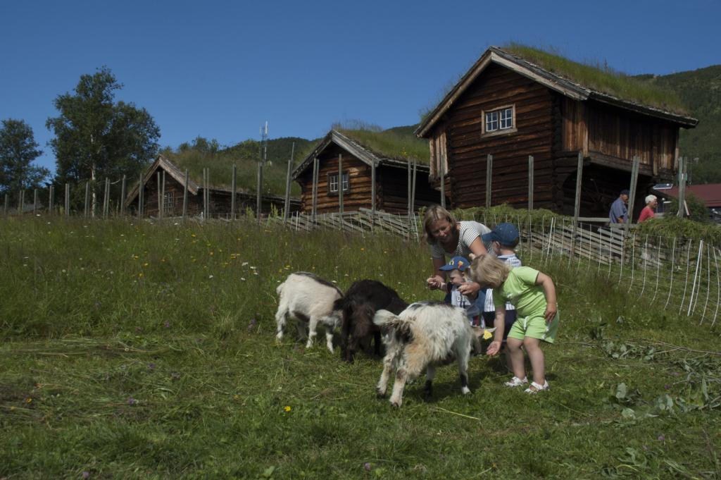 Bygdetun, folkemuseum og stavkirker. Hallingdal, Valdres, Numedal, Lærdal, Geilo, Hemsedal, Ål, Torpo, Gol.