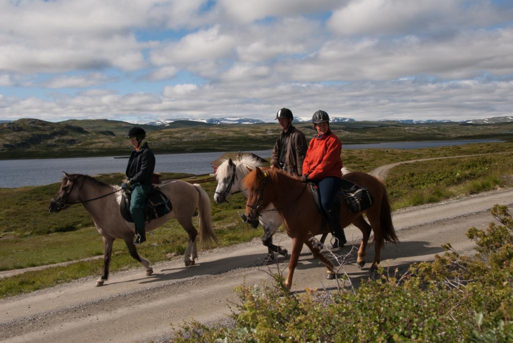 Ridning, riding, rideturer, Hallingdal, Golsfjellet, Hemsedal, Ål, Torpo, Geilo