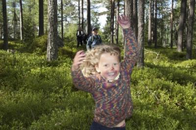 Klatreparker, leikeland, Hallingdal, Hemsedal, Geilo, Gol, Golsfjellet, Ål.