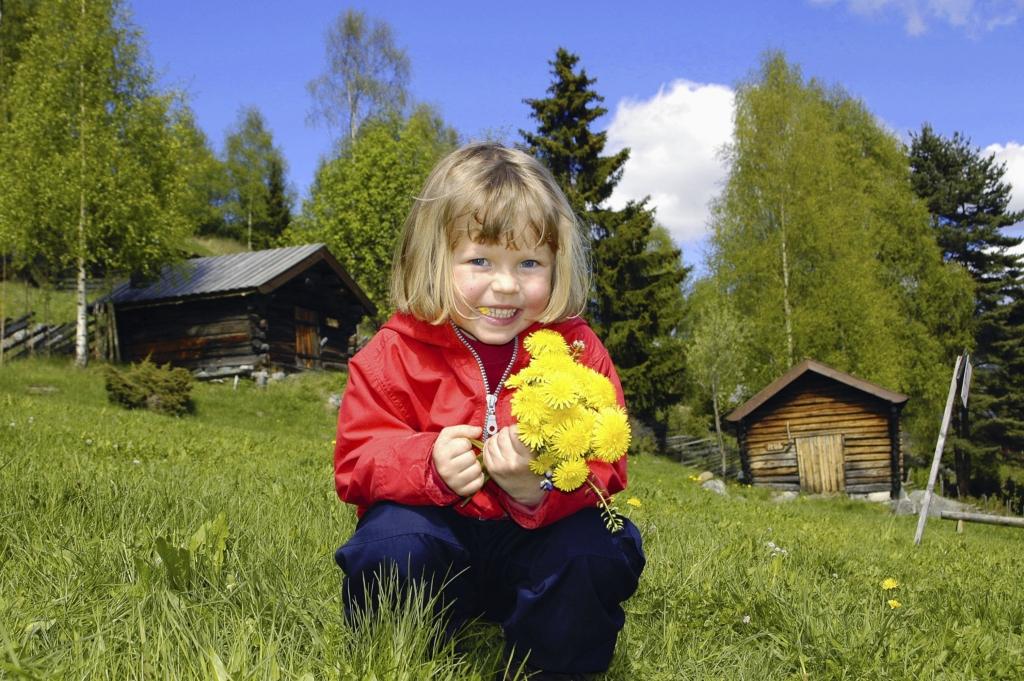 Opplev Hallingdal - aktiviteter for hele familien