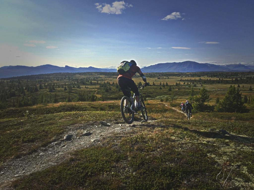 Stisykling på Golsfjellet i Hallingdal. Flytstier, Fjellstier, Høyfjellstier.