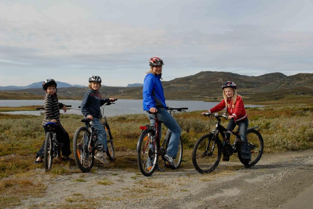 Fjellsykling i Hallingdal. Fjellveier, stier, sykkelstier.