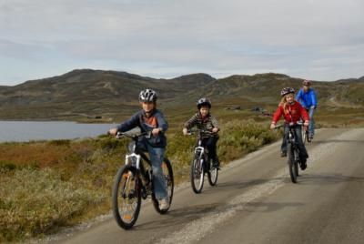 Fjellsykling i Hallingdal. Milevis med fjellveier, stier og andre fantastiske muligheter.