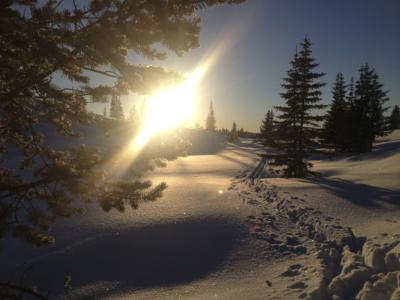 Vinter i Hallingdal, Hol, Geilo, Bergsjø, Ål, Gol, Golsfjellet, Hemsedal, Nesbyen, Flå