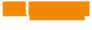 Hallingdal.info – din snarvei til de gode opplevelsene! Logo